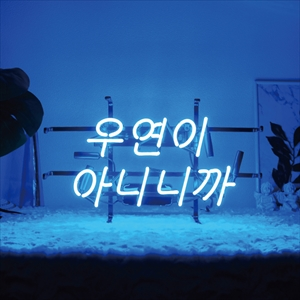ハングルネオン HN0001 우연이 아니니까(偶然なんかじゃないから) BTSの曲『DNA』などの歌詞にも出てくる素敵な言葉『全ては偶然じゃないから運命見つけた二人だから』